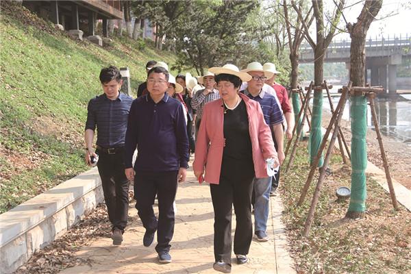 大舞台上唱主角 临湘市政协充分发挥委员作用